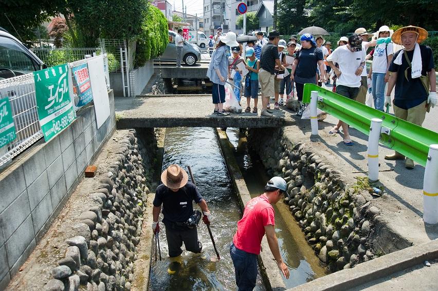 子ども日野宿発見隊-日野用水 2010-07-24