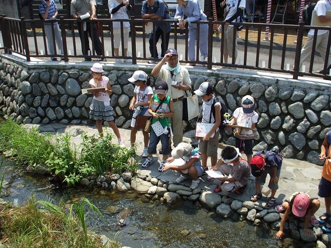子ども日野宿発見隊-親水広場 2010-07-24