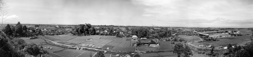 大昌寺山(現神明上第3緑地)から見た日野宿 昭和30(1955)年代初頭 志村章氏撮影